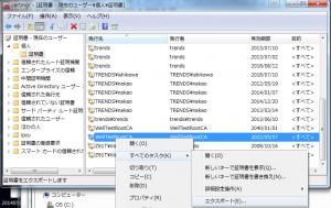 VPN029