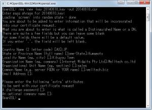 OpenSSL005